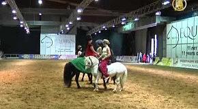 Укротить строптивого пони
