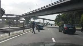 В Киеве водители спасли утку с утятами