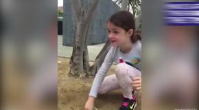 6-летняя девочка спасает утят