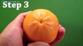 На спор - узнай  сколько долек в апельсине
