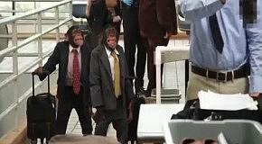 Легко ли выжить среди офисных клерков-шимпанзе?