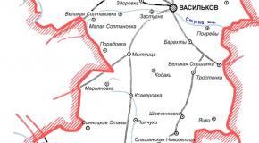 Карта Васильковский район, Киевская область, Украина