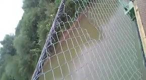 У прыгуна с моста лопнули трусы