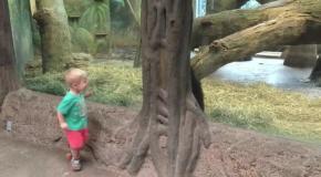 Веселая игра , ребенка и детеныша гориллы