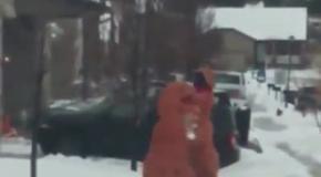 Динозавры дурачатся в снегу