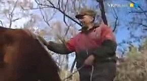 """Жизненные сенсации """"ЧЕРНОБЫЛЬ"""""""
