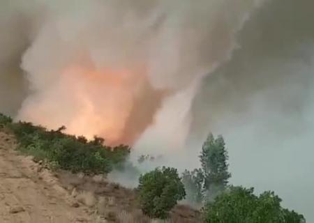ВПортугалии навидео сняли огненное торнадо