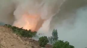 Огненный торнадо в Португалии
