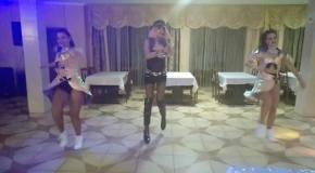 Пародист Дима Черников (Леди Гага) и шоу-балет La Rouge| Drag Queen| Шоу двойников