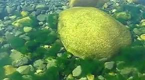 камни на дне Байкала