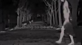 Реклама к Хэллоуину от Audi