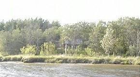 Виллы вдоль берега