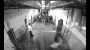 ГПУ опубликовала видео избиения арестантов в СИЗО Одессы (3)