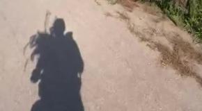 Прогулка на велосипеде в солнечный день!