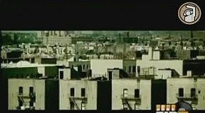 Shareefa Feat. Ludacris - I Need A Boss