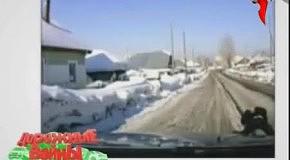 Дорожные войны Новый сезон: Тор-20 (8.01.2012)