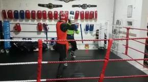 Макгрегор показал видео своего боксерского спарринга