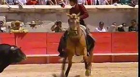 Легенда корриды - конь Мерлин