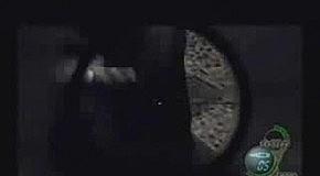 Papa Roach - Take Me(Resident Evil 4)