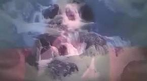 Венера Гаспарян - Геноцид