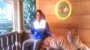 Сфоткайте меня с тигром