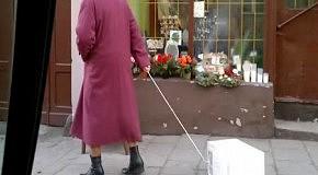 Бабушка выгуливает микроволновку