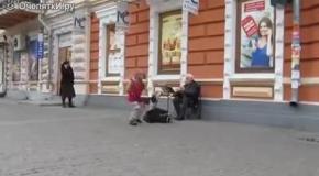 Дворняга подпевает кларнету