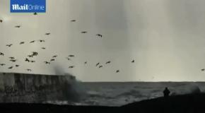 Оцени силу природы: бушующий ураган против прочной стены гавани