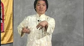 [T W C ] Shil Lim Tao form (in slow motion) - Grandmaster William Cheung