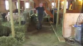 Танец фермера взорвал соцсети