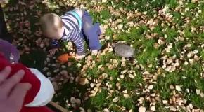 Малыш убегает от черепахи