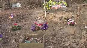 Нелегальні кладовища домашніх тварин у Києві