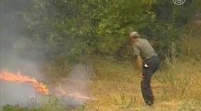 БК: в лесном пожаре под Волгоградом погиб человек