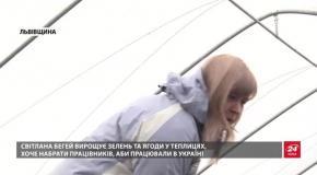 Затишна пекарня та теплиці: на Львівщині коштом Євросоюзу жінки розвивають власний бізнес