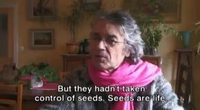 Кто контролирует семена тот контролирует весь мир