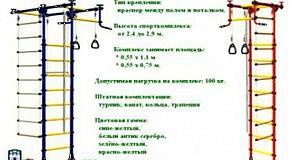 Бизнес Житомира (13): Спортивный уголок, турник в квартире - КМС-Столица