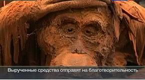 В Париже создали шоколадный лес из фильма Планета обезьян