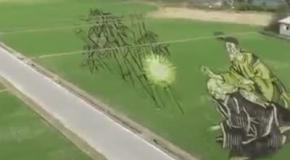 Рисовые картины на полях Японии