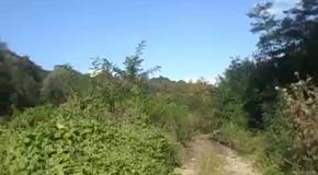 Прогулка среди мельниц и лугов в долине