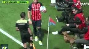 Собака - забивака прервала матч в чемпионата Аргентины