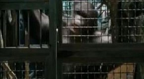 Восстание обезьян / Rise of the Planet of the Apes (трейлер 2)