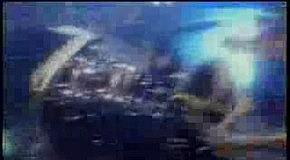 Scorpions- Rock You Like A Hurricane