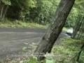 Subaru Rally Team and new WRX-STI