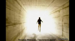 Леонид Минаев - полетела душа