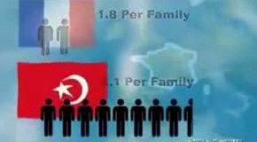 Мировая демография  миграция или исламизация