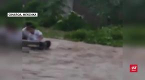 Внаслідок паводку в Мексиці загинуло троє людей: відео стихійного лиха