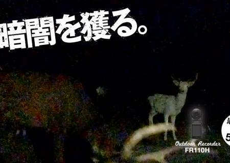 Новая камера отCasio может фотографировать иснимать видео вполной темноте