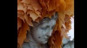 Осень - женщина за 40