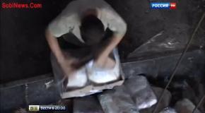 В РФ начали сжигать продукты