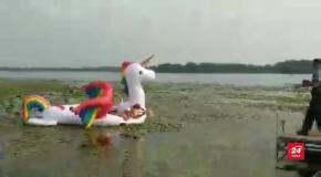 У США жінки застрягли на єдинорозі посеред озера: курйозне відео